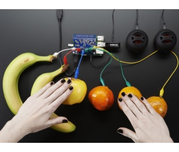 A2340 Capacitive Touch HAT for Raspberry Pi - MPR121